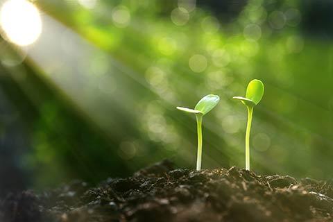 Bioladen Nachhaltigkeit